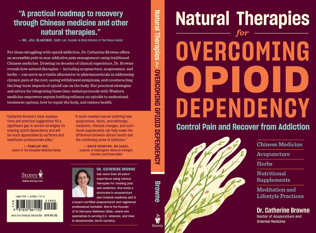 cropped-opioid-addiction-book-1100-px1.jpg