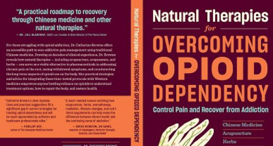 cropped-opioid-addiction-book-400-px.jpg